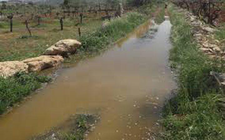 Des colons juifs inondent les terres de Palestiniens avec des eaux usées près de Naplouse